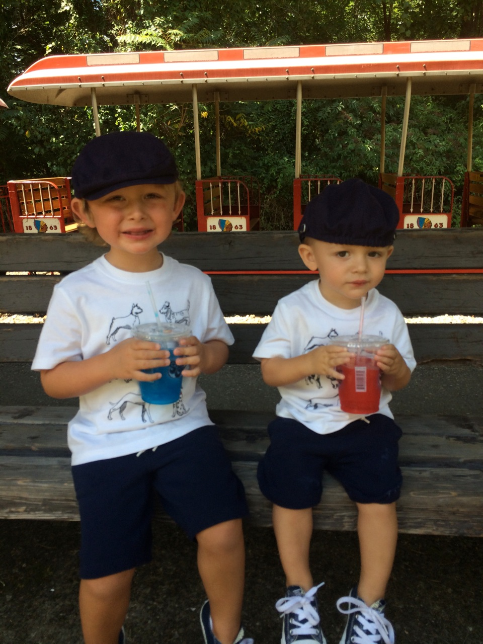 Grandsons Timmy and Brennan at the Fair